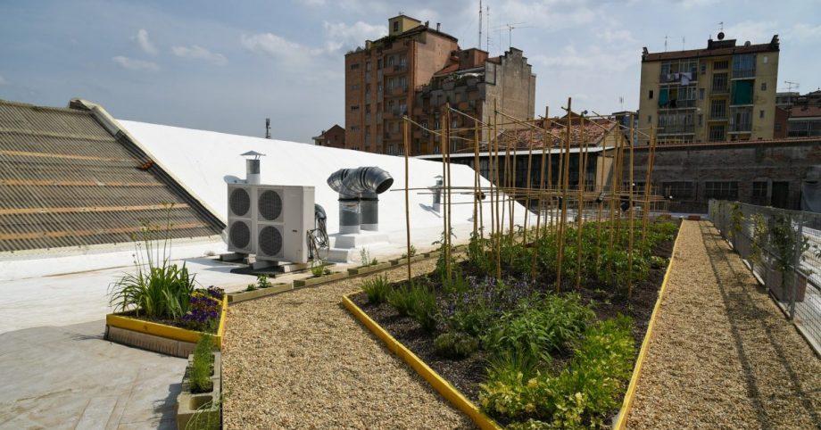 Esperienze di progettazione europea ProGIreg: intervista con la community planner di OrtiAlti
