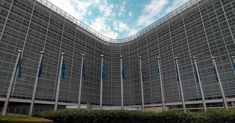 Il portale bandi della Commissione europea