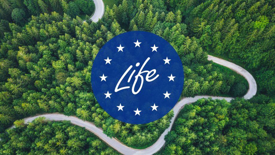 Un'onda verde: i nuovi progetti di LIFE